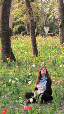 io fiori